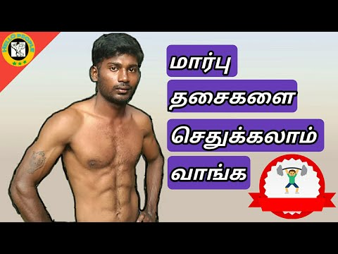 BEST CHEST WORKOUT AT HOME ¶¶ IN HELLO PEOPLE TAMIL