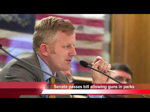 Tennessee passes bill allowing guns in playgrounds and parks