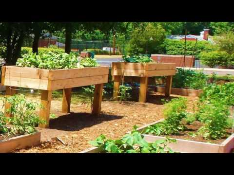 how to build off the ground garden beds