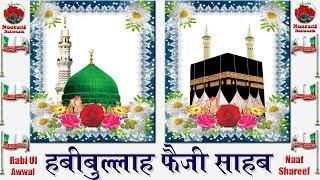 दिल थाम कर सुने | Habibullah Faizi Latest Naat | Nabi Ki Gadaai Par Hai Naaz Mujhko