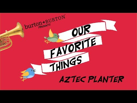 Our Favorite Things: Aztec Planter