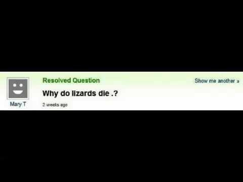 38 most stupid questions asked on Yahoo