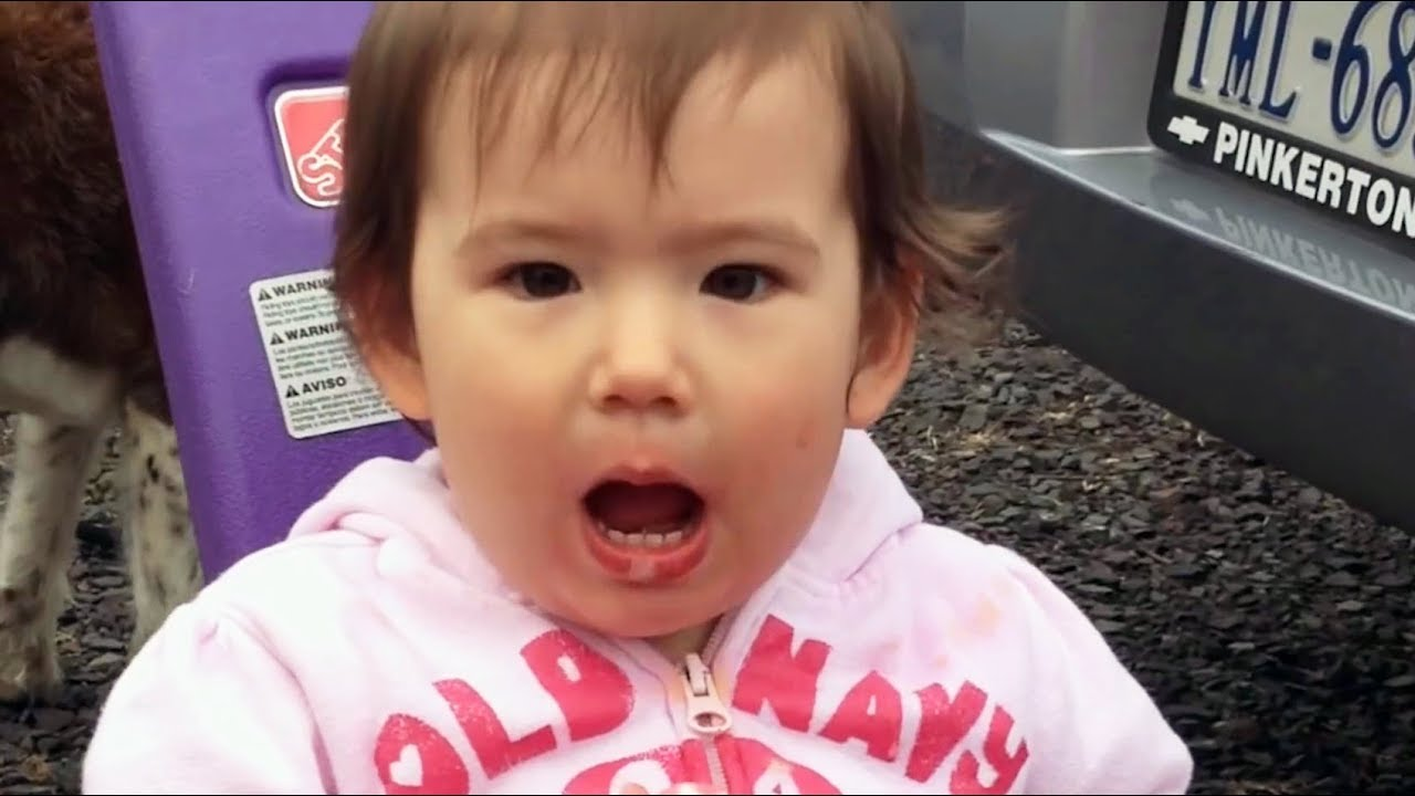 Kids Say Funny Things 3