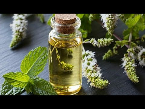DIY Mint Herbal Oil for hair growth.