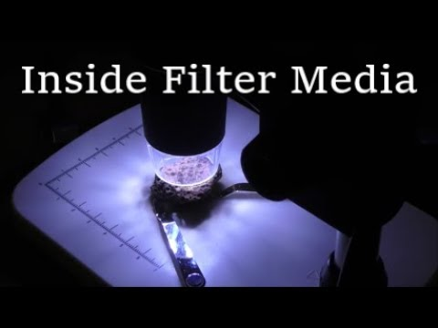 Looking INSIDE Filter Media for Aquariums and Ponds