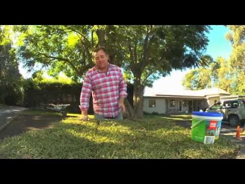 Installing your new lawn