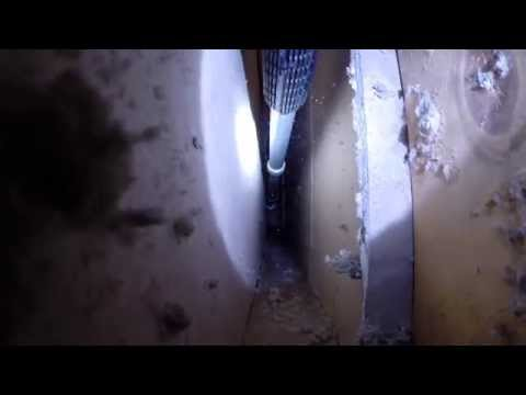 How To Remove Squirrel Trapped Inside Wall Void.