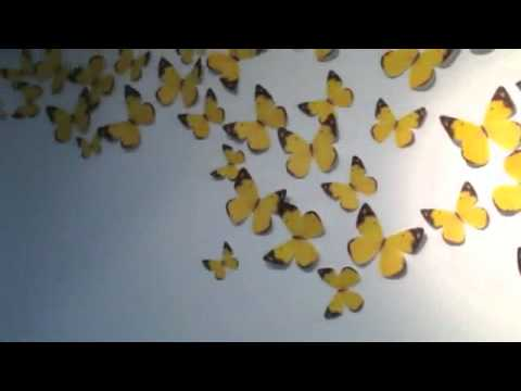 Butterfly Wall Decal Removable Sticker DIY Art 3D Wallpaper Sticky Notes