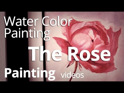 Water Color Painting - A Rose