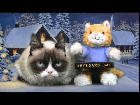 Keyboard Cat Meets Grumpy Cat!