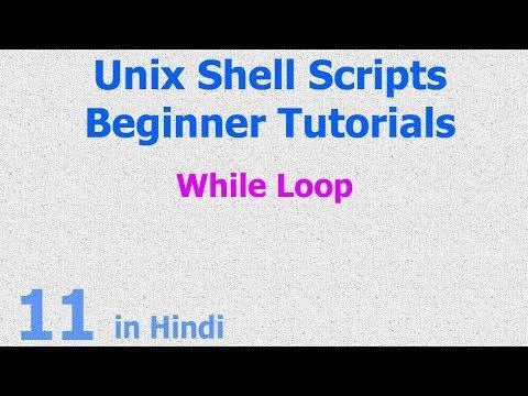 11 - Unix Shell Scripts - While Loop - Base Shell