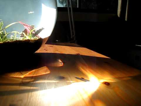 Fish Bowl Starting a Fire