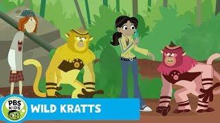 wild kratts rocket disc pbs kids