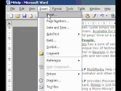 Microsoft Office Word 2003 Insert a manual page break