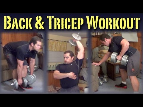 Back & Triceps Workout with Dumbbells