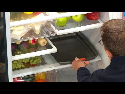 The Best Place to Thaw Your Thanksgiving Turkey + How to Keep ALL Your Food Warm | Rachael Ray Show