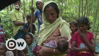 Rohingya fleeing Myanmar find no shelter in Bangladesh | DW English