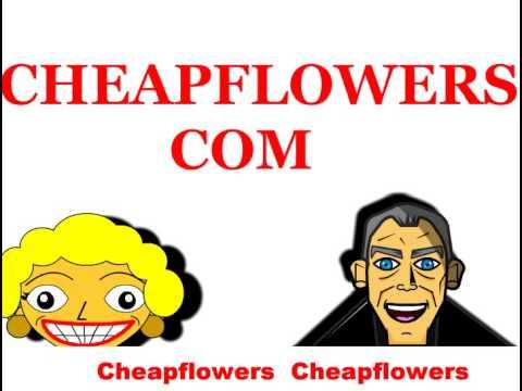 Cheap Flowers Music Video