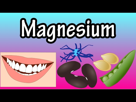 Magnesium - How Much Magnesium Does The Body Need - Why Does The Body Need Magnesium