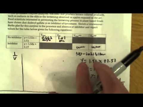 Enzyme kinetics calculating VMAX and KM