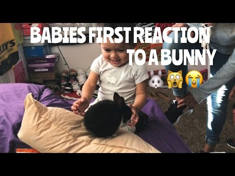 OUT FOR THE WEEKEND | MY BABIES FIRST BUNNY REACTION🙀