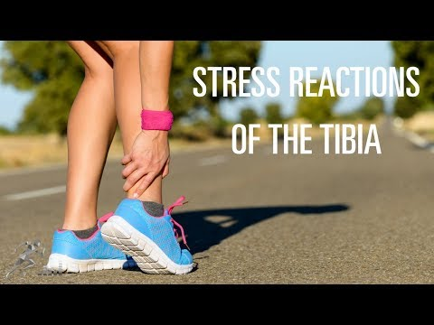 What can you do to recover from a stress reaction of your tibia?