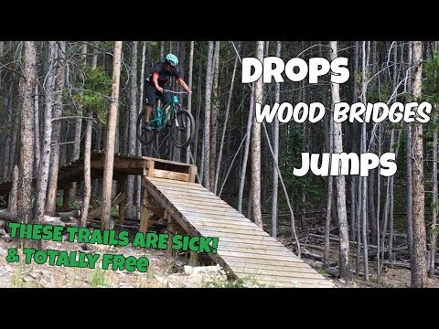 Public MTB trails in Colorado have awesome Freeride features! | B-Line & Barney Flow