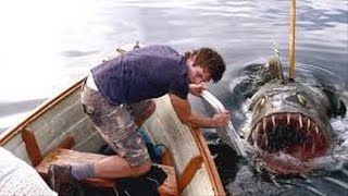 10 Most Chilling Animal Attacks All Time!