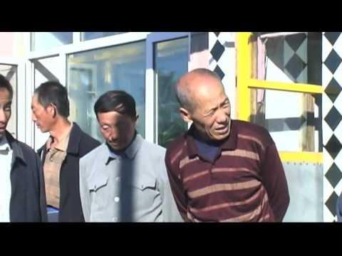 Emotional Healing in China (Heiner Fruehauf)