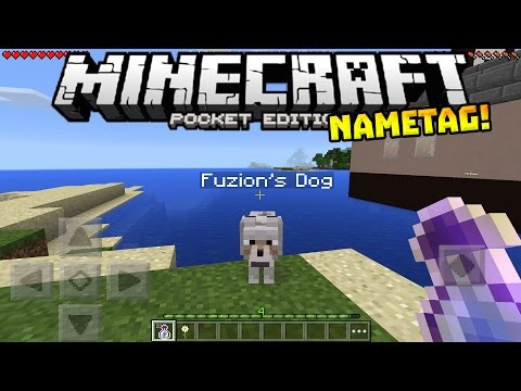 NAMETAGS in MCPE!! - HIDDEN FEATURE!! - Minecraft PE (Pocket Edition)