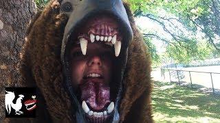 Bear Dance