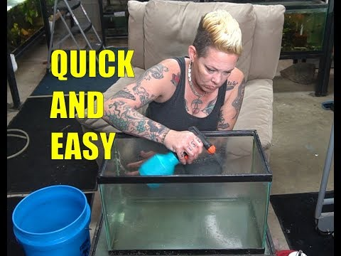 HOW TO Clean Used Aquariums