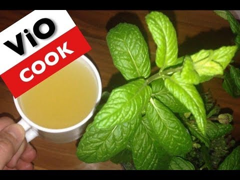 How To Make Mint Tea From Fresh Mint Leaves