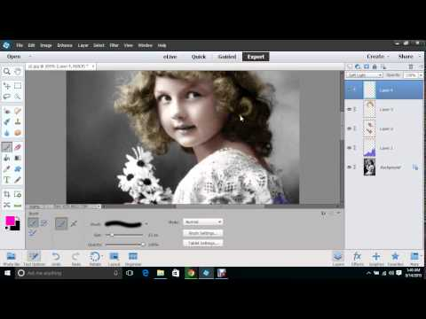 Photoshop elements Color a Black and White Photo
