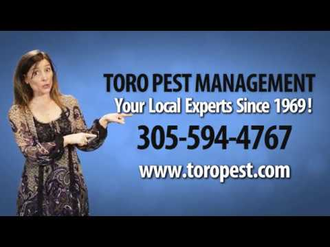 Best Pest Control Company in Miami Dade