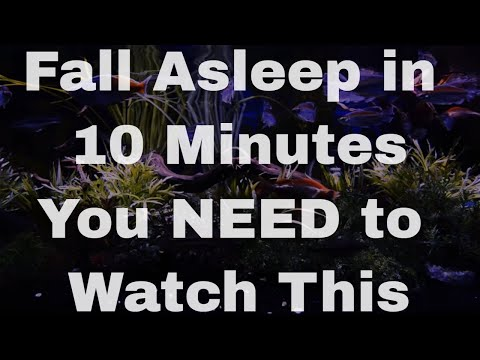 THE BEST Sleep Aid Video: The Insomnia Key (fall asleep fast)