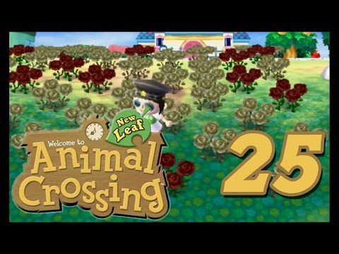 Animal Crossing New Leaf - Episode 25 (Field of Dead Roses)