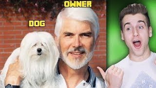 Why Do Pet Owners Look Identical To Their Pets?