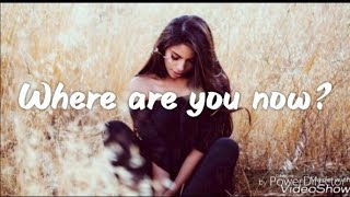Download Where Are You Now - Loving Caliber feat. Lauren Dunn [Lyrics /Lyric Video]