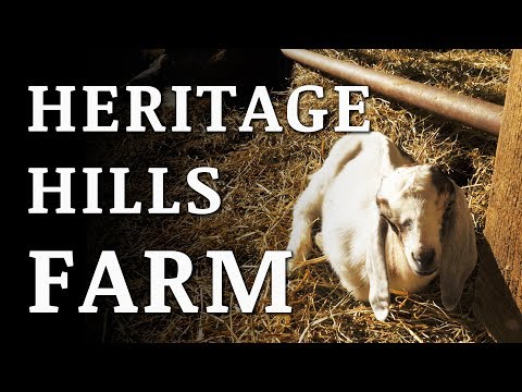 Visiting HERITAGE HILLS Farm and GIVEAWAY!