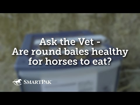 Ask the Vet - Are round bales healthy for horses to eat?