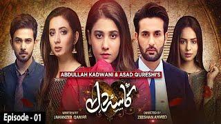 Kasa-e-Dil - Episode 01 || English Subtitle || 9th November 2020 - HAR PAL GEO