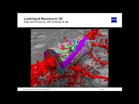 ZEISS Webinar: Enabling Connectomics with Multi-beam Scanning Electron Microscopy