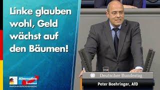 Linke glauben wohl, Geld wächst auf den Bäumen! - Peter Boehringer - AfD-Fraktion im Bundestag
