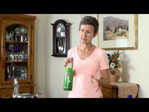 Inner Origin Advocate - How To Make Water Kefir with Michelle McClintock