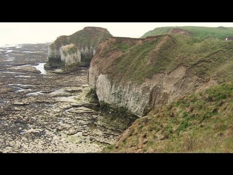 Flamborough Lighthouse, Cliffs, Caves, Puffin & Sea Bird Colony