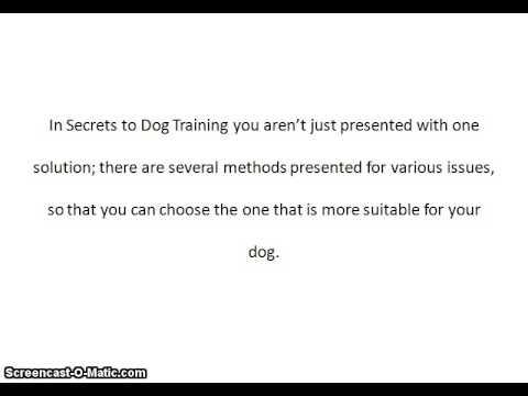 Secrets to Dog Training Review   Secrets to Dog Training