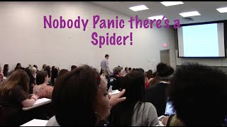 I Lost My Spider In A College Class Prank