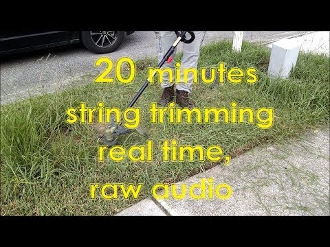Weed Whacking Tall Grass