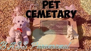 Download PET CEMETARY Video
